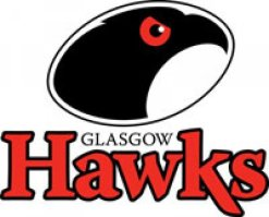 Hawks Badge